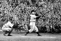 中西太選手の豪快な打撃フォーム=1955年撮影