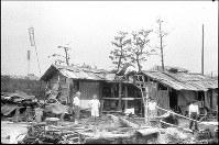 (2)焼け跡に建てられたバラック小屋(爆心地から1300メートル)。左奥の土手の上には「下柳町町内会」の幟旗がある。町会員1000人中、生存者は70人だった=広島市下柳町(現広島市中区銀山町)で1945年9月11日前後、山上圓太郎撮影 ※広島平和記念資料館(広島原爆資料館)の検証による