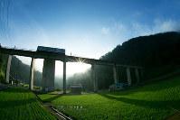 初夏の朝日を浴びながら、宇津井駅に入線した車両=島根県邑南町宇都井で、田原幹夫さん撮影