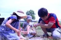 プラスアーツのキャンプ・イベントで火おこしを体験する親子=神戸市中央区で6月17日
