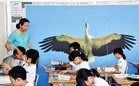 実物大のコウノトリの写真を教室に展示して、生態について学ぶ子どもたち=島根県雲南市立西小学校で、山田英之撮影