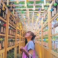 風鈴の回廊で人気の埼玉県川越市「氷川神社」=SNAPLACE提供