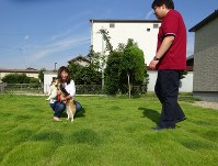 愛犬と戯れる長谷川じゅん子さん。「正面から撮らないでください」と祐生さん=愛知県春日井市で