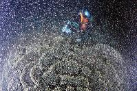 「爆発」したように海中に一斉放出されたクシハダミドリイシの卵=和歌山県串本町高富で2017年7月13日午後9時54分、山本芳博撮影