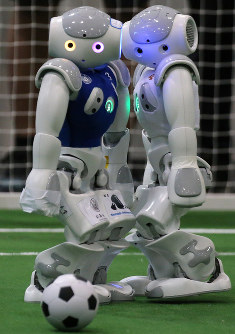 Robots are seen at RoboCup2017 Nagoya Japan in Nagoya's Minato Ward. (Mainichi)