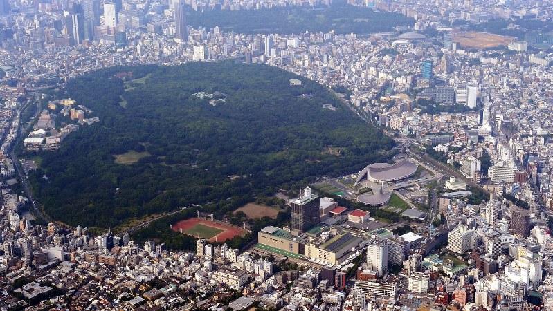 代々木公園(中央)と渋谷区一帯