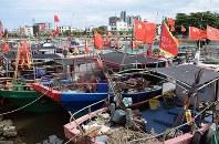 南シナ海に面した中国・海南島瓊海(けいかい)市潭門(たんもん)鎮。港には、実効支配を進める南沙(英語名スプラトリー)諸島に出漁する漁船が並ぶ=7月7日、林哲平撮影