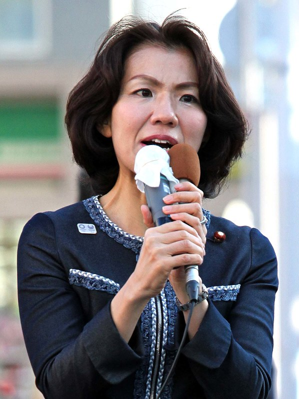 豊田 真由子 衆議院 議員