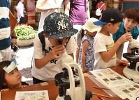 顕微鏡で微生物を見る子どもたち