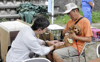 A veterinarian, left, gives a mock medical exam to a small dog at a temporary veterinary hospital set up at Yamada Junior High School in Mishima, Shizuoka Prefecture, on Aug. 27, 2017. (Mainichi)