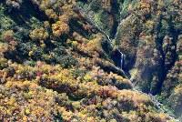 見ごろを迎えている北海道・大雪山系の紅葉=2017年9月22日午前11時26分、本社機「希望」から竹内幹撮影