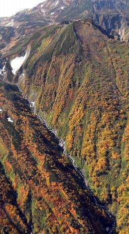 見ごろを迎えている北海道・大雪山系の紅葉=2017年9月22日午前11時29分、本社機「希望」から竹内幹撮影