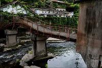 山川草木と共にゆれる=熊本県水俣市で、田鍋公也撮影