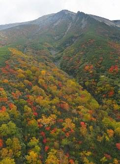 中腹が紅葉に染まる中、噴火から3年を迎えた御嶽山=長野県木曽町で2017年9月25日午後2時56分、本社ヘリから手塚耕一郎撮影