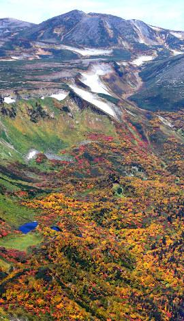 見ごろを迎えている北海道・大雪山系の紅葉=2017年9月22日、本社機「希望」から竹内幹撮影