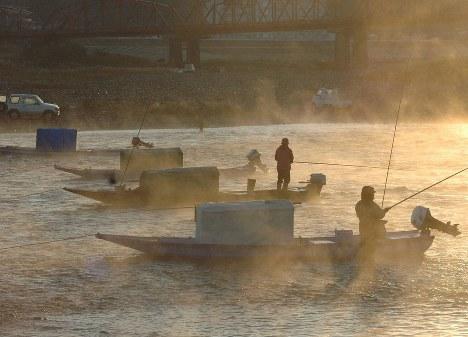 川霧の立ち込める中で落ち鮎を狙う釣りファン。こうした風景も貴重になるのだろうか=高知県四万十市の四万十川で2008年