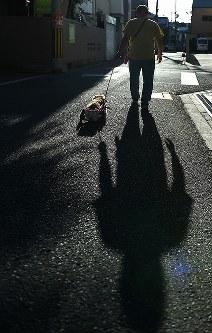 車椅子に乗ったスイーピーと散歩する川西英治さん=大阪市住之江区で2017年8月25日、久保玲撮影
