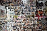 店内に貼られたこれまでに製作した車椅子に乗る犬たちの写真=大阪市住之江区で2017年8月26日、久保玲撮影