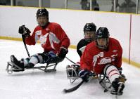 練習でパックを奪い合うパラアイスホッケー日本代表の選手たち