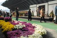 菊人形や鮮やかな菊花が目を楽しませる「きたみ菊まつり」=北見市で