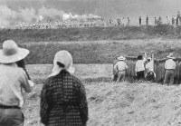 聖火は和歌山から奈良へ、刈り入れ前の稲田でお百姓さんも声援=和歌山県内の紀の川沿いで 1964年9月27日午前9時40分撮影