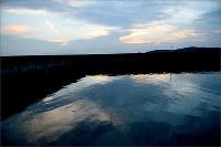 あるとも見えぬうねりをたたえて=熊本県水俣市で、田鍋公也撮影