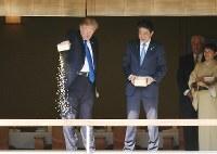 ワーキングランチの前に、池のコイに餌を与える安倍晋三首相(中央右)とトランプ米大統領(同左)=東京・元赤坂の迎賓館・和風別館で2017年11月6日午後0時9分(代表撮影)