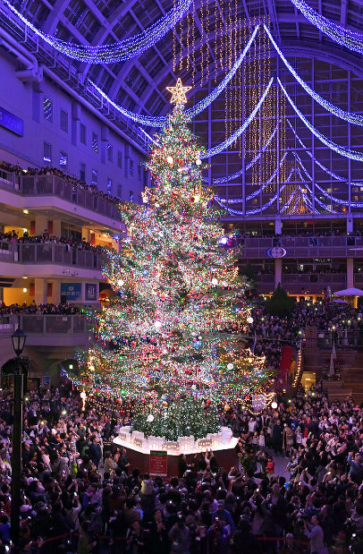 A large Christmas tree at the Sapporo Factory shopping mall in the cityu0027s Chuo Ward is illuminated in this recent photo. The roughly 15-meter high tree is ... & Photo Journal: Lighting up the spirit - The Mainichi