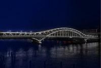 新たにライトアップされる白鬚橋のイメージ=都提供