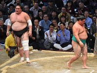 嘉風(右)が寄り切りで照ノ富士を破る=福岡国際センターで2017年11月14日、矢頭智剛撮影