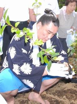 苗木を植える安馬関=神奈川県秦野市の出雲大社相模分祠で2007年6月3日午前10時半、米田堅持撮影