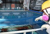公開された東京電力福島第1原発3号機原子炉建屋の最上階。燃料が保管されているプール(左下)そばの空間放射線量は毎時700マイクロシーベルトだった=福島県大熊町で2017年11月21日午後2時28分、曽根田和久撮影