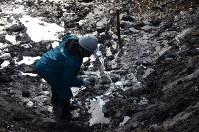 大量のドラム缶が掘り出された第2処分場の汚染土壌を視察する地元住民=能代市で