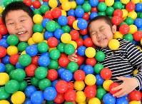 ボールプールで遊ぶ小児がん患者の土井大地さん(右)。左は兄の颯太さん=大阪市鶴見区で2017年11月4日、猪飼健史撮影