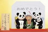上野動物園で誕生したジャイアントパンダのシャンシャンをテーマにした「こんにちは赤ちゃん雛」=東京都台東区で2017年11月28日午前11時35分、渡部直樹撮影
