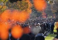 1年半ぶりの一般公開で、紅葉が見ごろとなった乾通りを歩く大勢の人たち=皇居で2017年12月2日午前9時52分、手塚耕一郎撮影