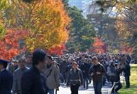 1年半ぶりの一般公開で、紅葉が見ごろとなった乾通りを歩く大勢の人たち=皇居で2017年12月2日午前9時44分、手塚耕一郎撮影