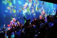 描いた魚が壁に映し出されて泳ぎ出す「お絵かき水族館」=神戸市中央区で2017年11月23日、大西岳彦撮影