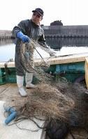 松前小島の漁港内に仕掛けられていた刺し網を引き揚げる、小島管理人の吉田修策さん。誰が仕掛けたかは定かではない=北海道松前町の松前小島で4日午前10時25分、代表撮影