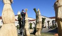 冬支度でソテツにこもを巻く造園業者の職人