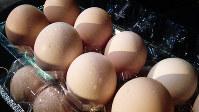 せめてものお礼にと父親が差し出した卵。少ない言葉からも父娘の気持ちは伝わる=金光敏さん撮影