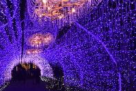 クリスタルビーズが光るアーチの中央には、流木とクリスタルビーズで作られたシャンデリアがつるされている=神奈川県藤沢市江の島2の江の島サムエル・コッキング苑で