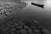 さざ波を立てては消えていく=熊本県水俣市で、田鍋公也撮影