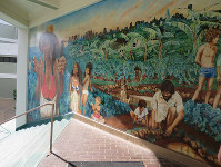 A mural at the University of Hawai'i at Manoa is seen on Nov. 16, 2017. (Mainichi)