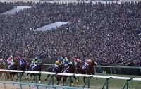 大きな歓声の中、第62回有馬記念(G1)の先頭を走るキタサンブラックと武豊騎手ら=中山競馬場で2017年12月24日午後3時29分、竹内紀臣撮影
