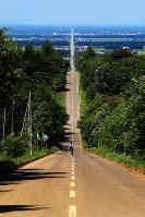 東西約28キロ続き、撮影スポットにもなっている「天に続く道」=北海道斜里町で2017年7月13日、梅村直承撮影