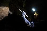 真っ暗なトンネルの中で岩を掘るシェルドン・ダオ・アイさん。少人数で金を採掘・精製する零細小規模金採掘では貧困家庭の子どもらが、有毒な水銀を使った精製作業や金鉱山での重労働で家族を支えている=フィリピン・ベンゲット州イトゴンで2017年8月12日、川平愛撮影