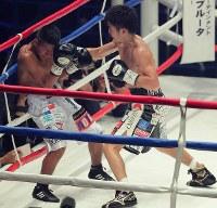 【WBC世界ライトフライ級王座戦】四回、ヒルベルト・ペドロサを攻める拳四朗(右)=横浜文化体育館で2017年12月30日、和田大典撮影
