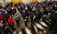People clap their hands next to fresh tuna ahead of the first auction of the year at Tsukiji fish market in Tokyo's Chuo Ward, on Jan. 5, 2018. (Mainichi)
