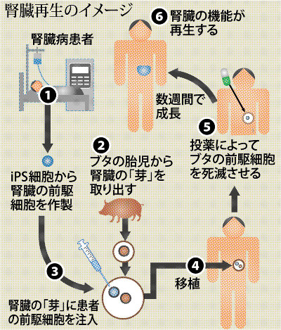 https://cdn.mainichi.jp/vol1/2018/01/05/20180105k0000m040125000p/7.jpg